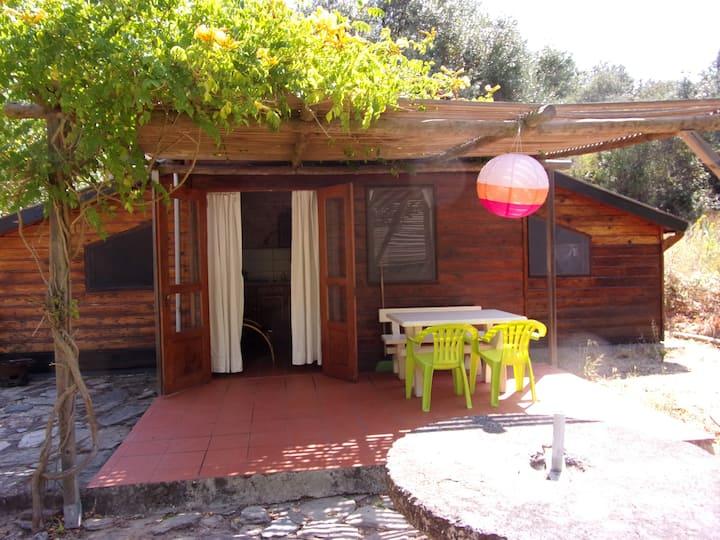 Samouqueira  wooden house