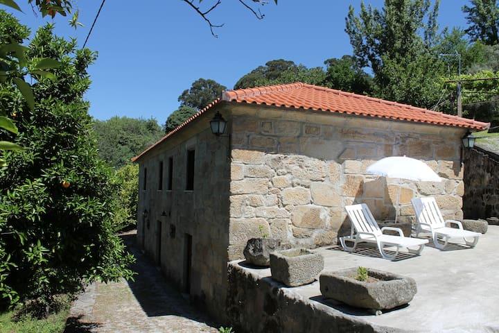 Quinta da Frieira, Casa rural - Resende - Villa