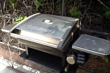 ....equipped with your own private BBQ grill!