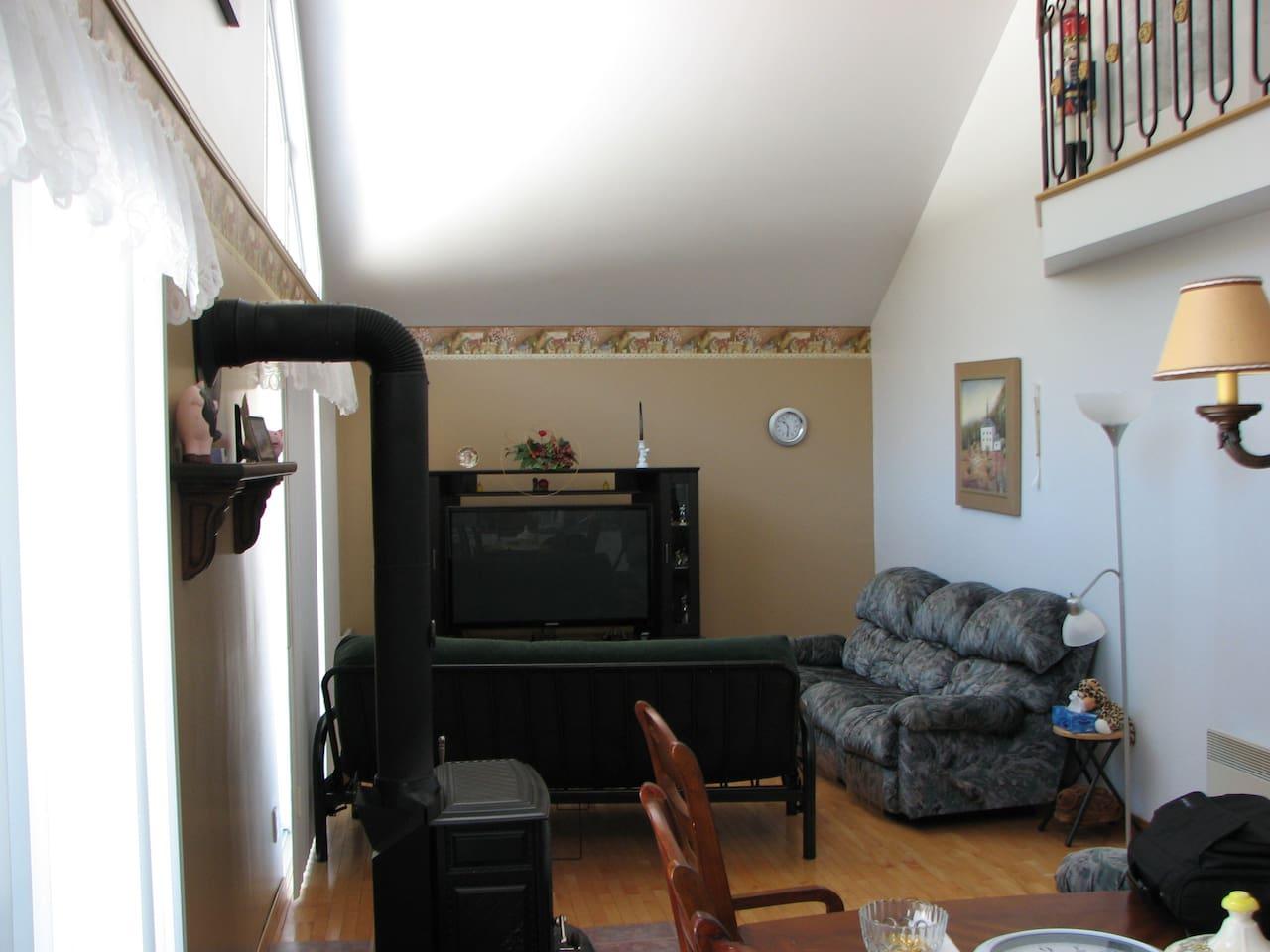 Salon avec futon 2 places