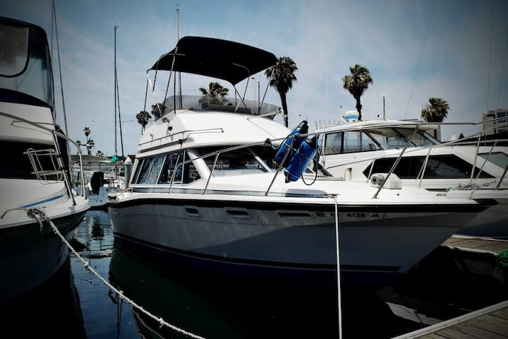 32' Powerboat in Newport Harbor - Newport Beach - Boat