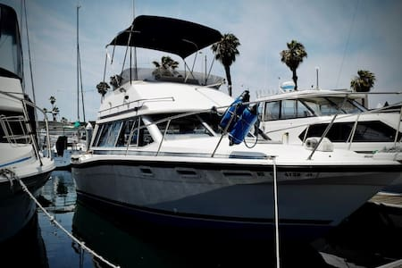 32' Powerboat in Newport Harbor - Newport Beach