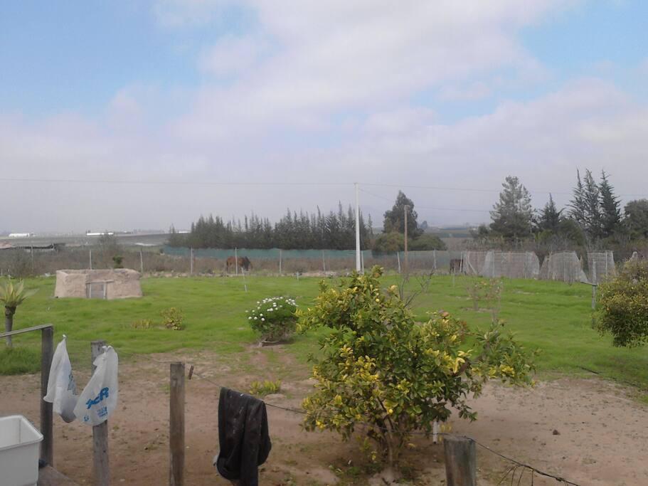 en esta foto se observa los lugares cerca de la casa
