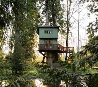 Treehouse with Panoramic Views