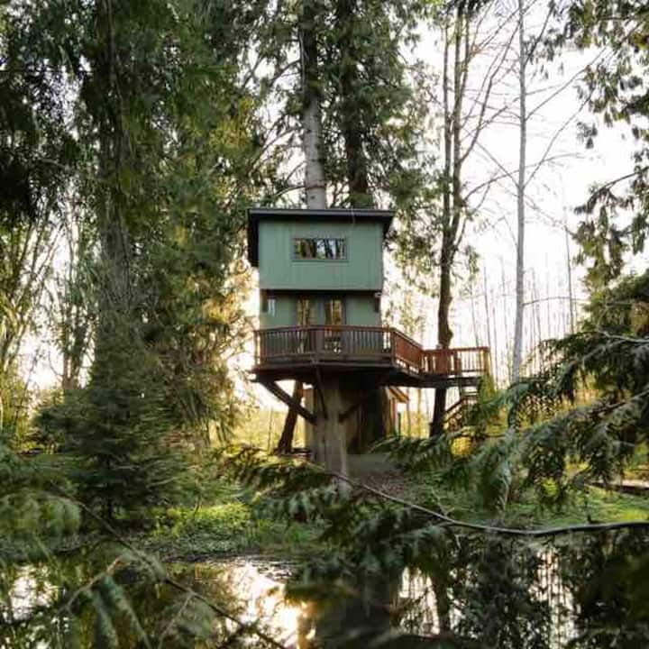 Treehouse With Panoramic Views Treehouses For Rent In Olympia