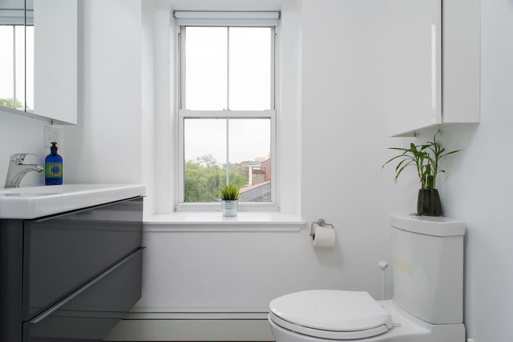 Shared common bathroom, with city skyline views. Next to Modern Bedroom.