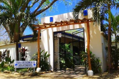 Tamarindo Blue. Duplex 1