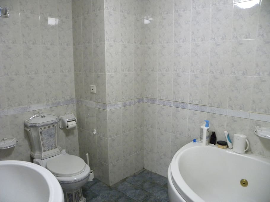 Attached to the master bedroom is this jacuzzi tub and shower and big bathroom, even has a bidet . . .