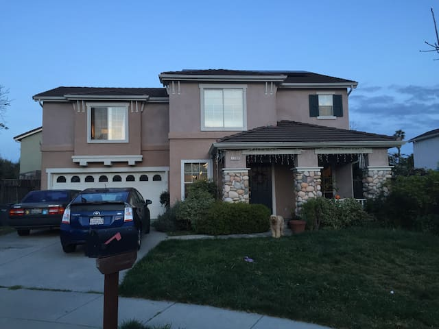 Santa Cruz Simple - Whole House - Santa Cruz - Hus