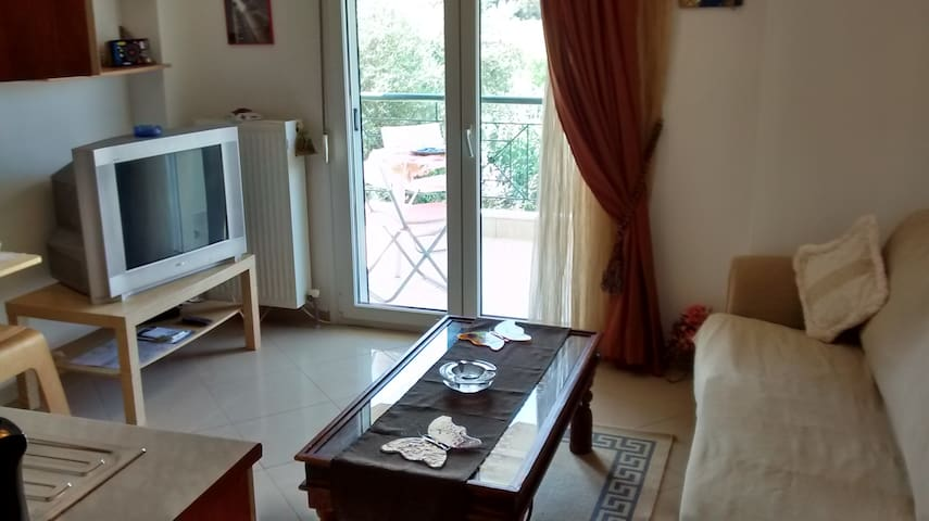 shell -  Κοχύλι  - Thessaloniki - Appartement
