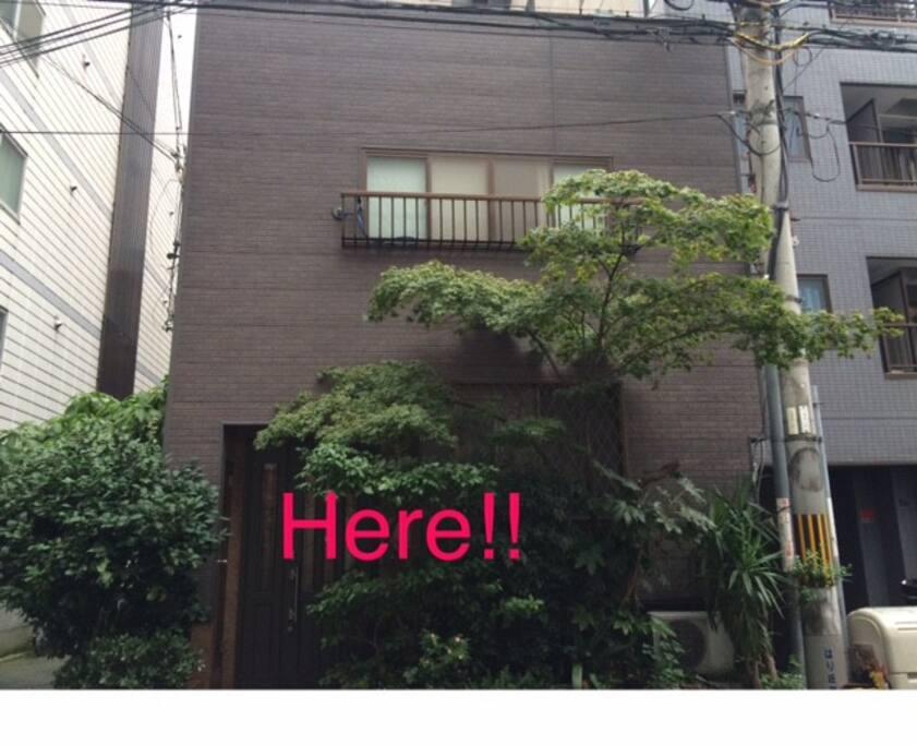 我が家です!目印は玄関前に大きな木が生えていますよ!