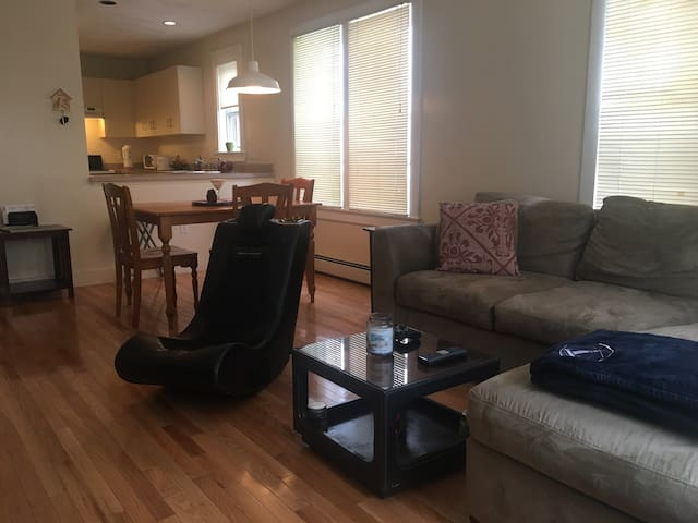 Gorgeous 1 bedroom apartment - Boston - Appartement