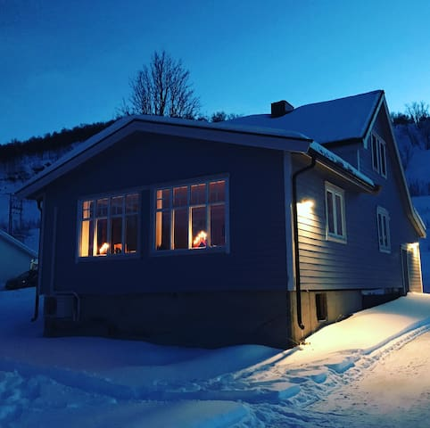 Bergly- Explore northern lights and great hikes!