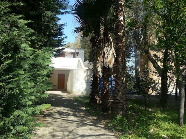 Casa sulla scogliera nel Salento - Torre Saracena