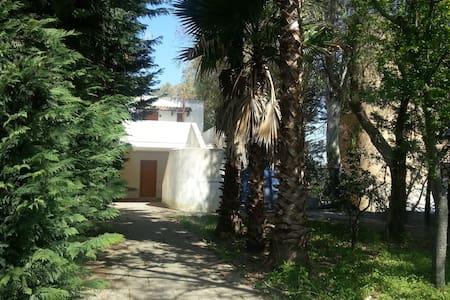 Casa sulla scogliera nel Salento - Torre Saracena - Wohnung