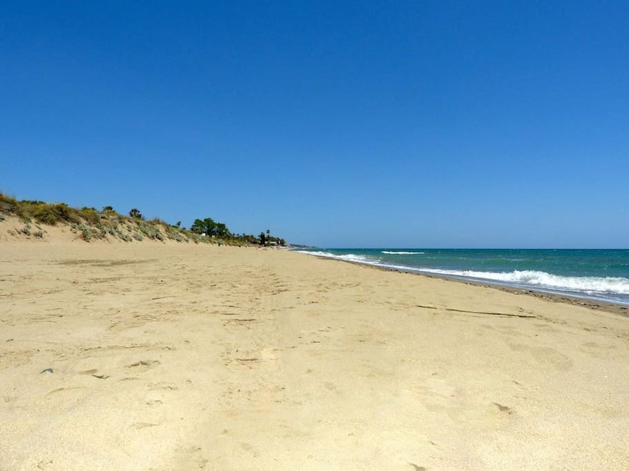 Cabopino Beach with sand dunes