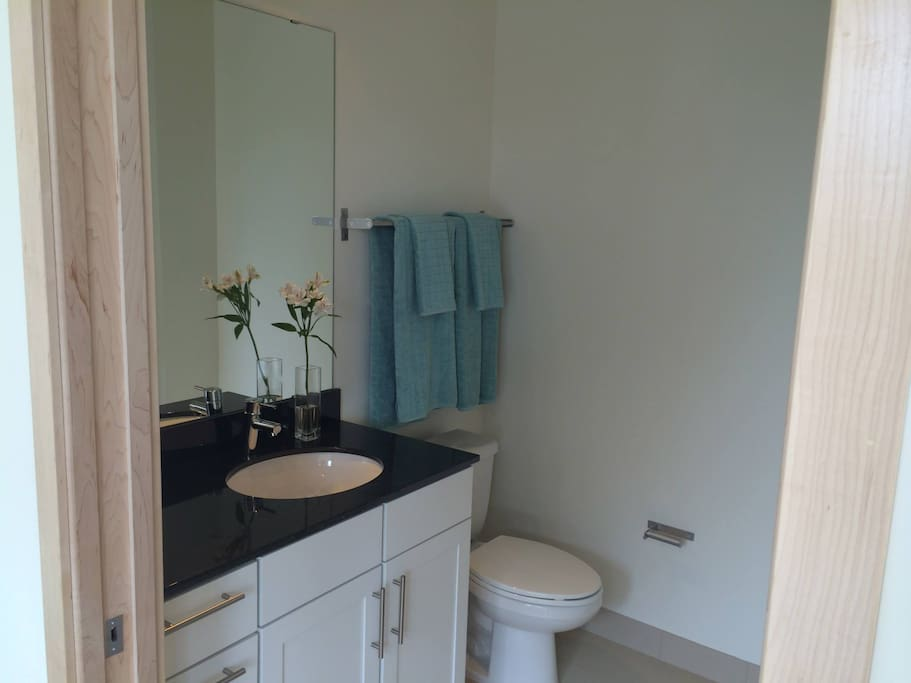Private bathroom within bedroom!
