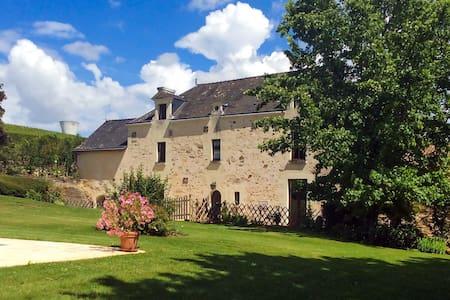 Allouette Gite @ Manoir Savonniere - Les Verchers-sur-Layon - 住宿加早餐
