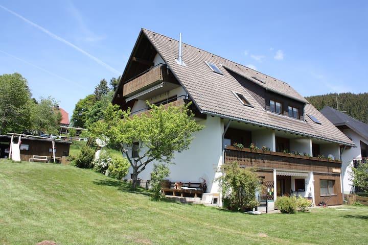 Ruhe und Erholung - Sportlich Aktiv - Lenzkirch - Flat