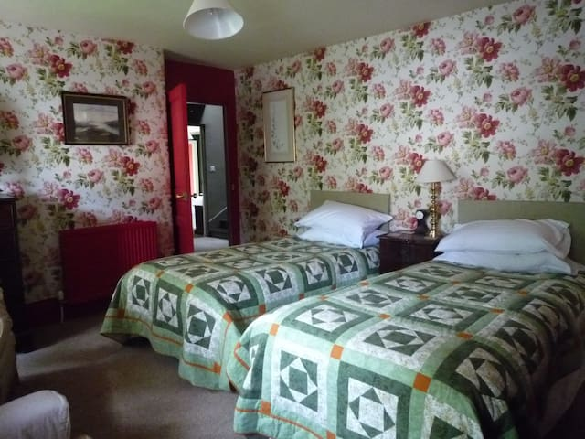 Period B&B, twin room en suite, central and quiet