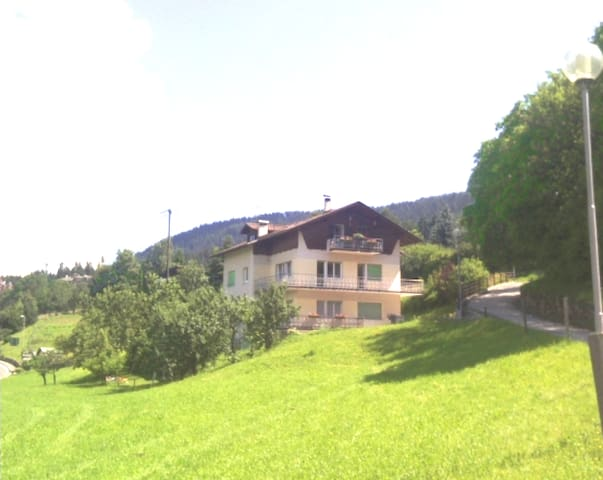 House Val di Non,wonderful landscap - Ronzone - Huis