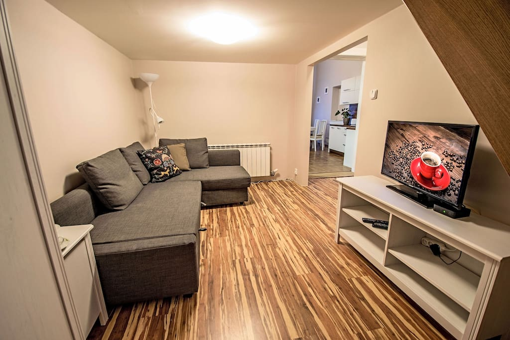 1st room with convertible sofa and TV with cable channels