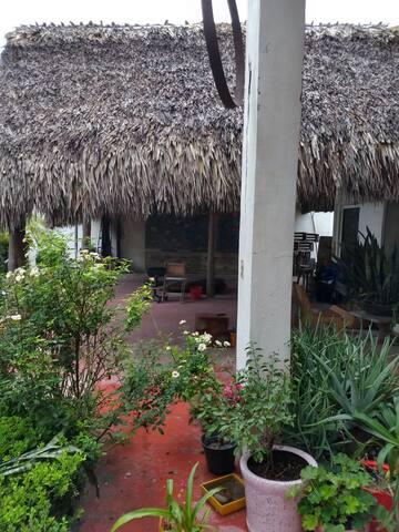 Habitación amplia jardín, muro de escalada.