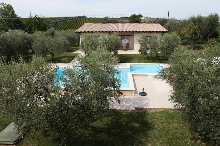 Villa Torri – Room & breakfast - Torano Nuovo - Oda + Kahvaltı
