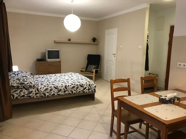 Large Studio, Free Parking in Garage, Fast Wifi TV