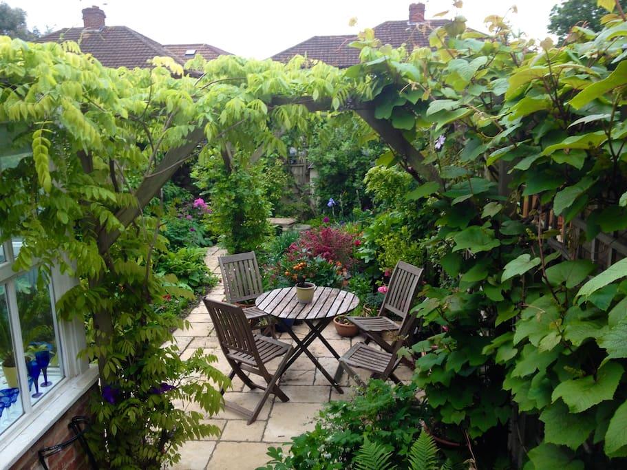 Garden in June 2015