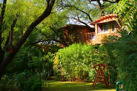 Tree House - Luxury Nest - Jaipur - Treehouse