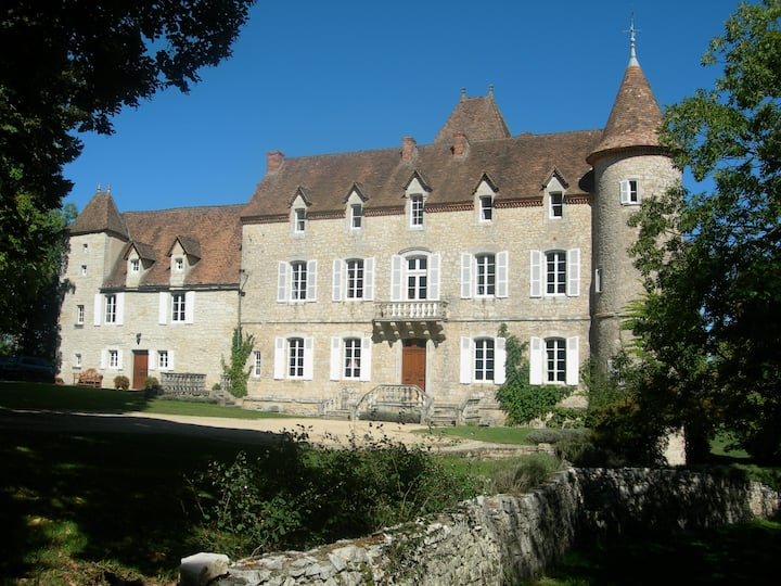 Chateau de Lamostonie