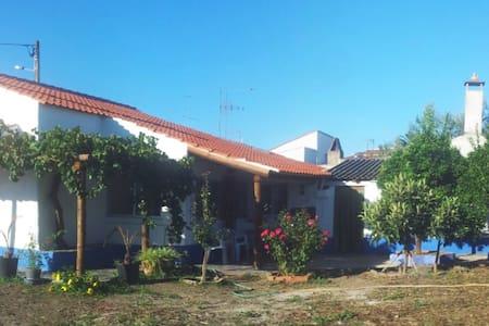 Campinho Guesthouse - Rural Tourism