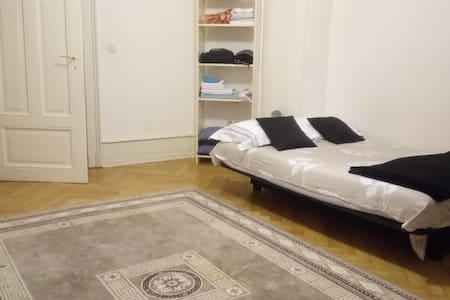 Grand Appartement au pied du tram - Straatsburg