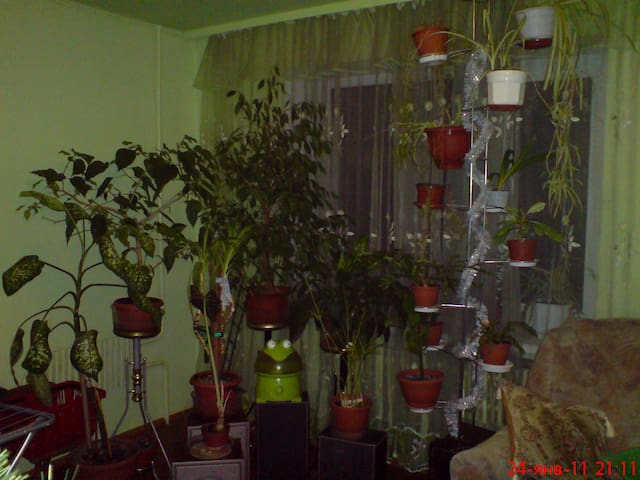 Комната в красивейшем районе - Kharkiv - Apartment