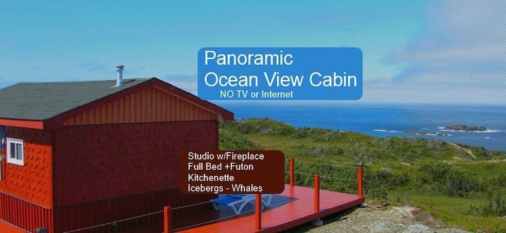 Panoramic Ocean View - Artist Cabin - Twillingate - Cabin