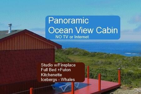 Panoramic Ocean View - Artist Cabin