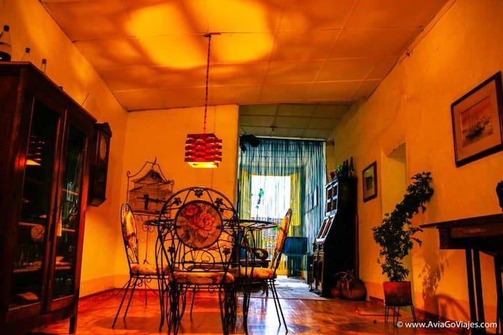 La casa amarilla - Jardín