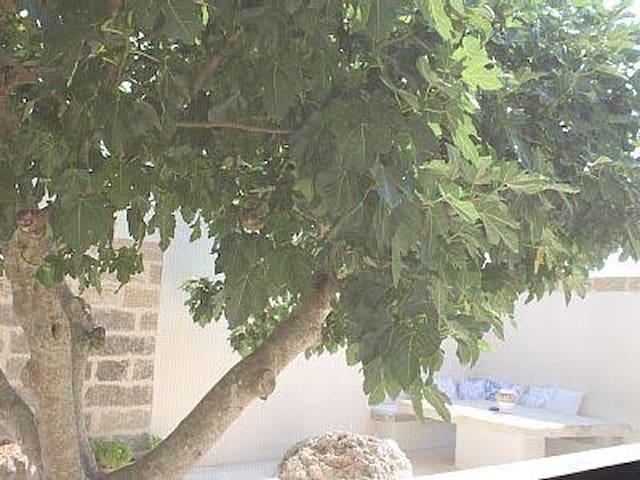 Dimora Cavalieri - Andrano - Casa