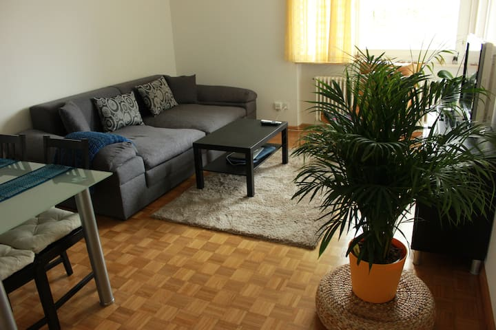 Apartment close to Basel-City (15 minutes) - Riehen - Apartment