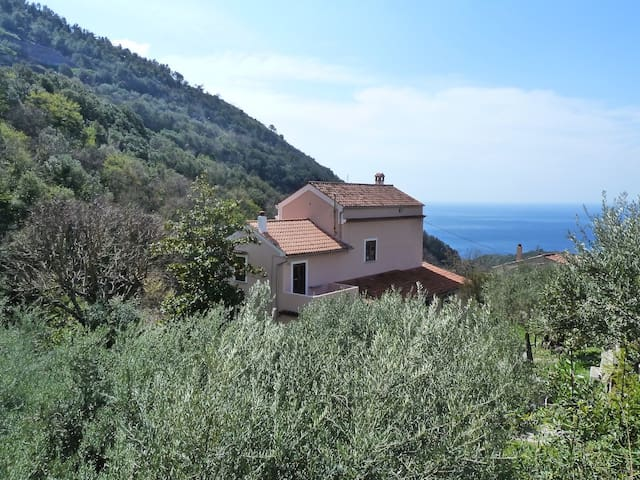 Casa Puccini