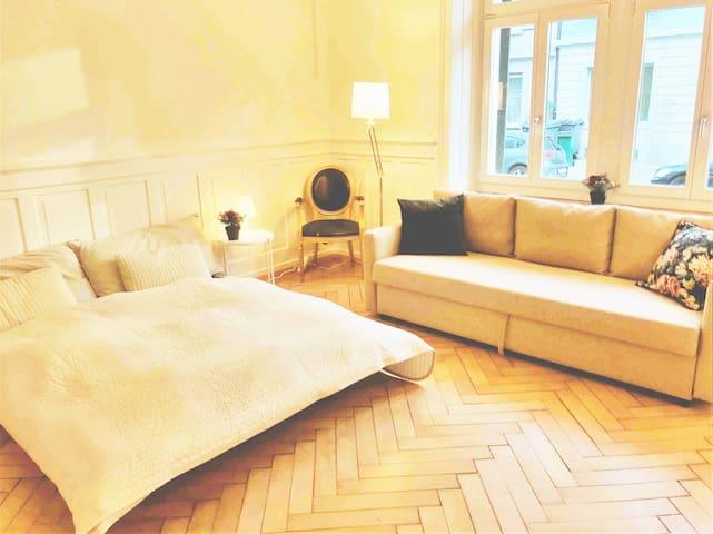 BIG Room Zurich City (1-4pax)