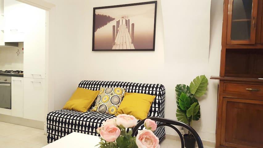 Comfortable Rome apartment