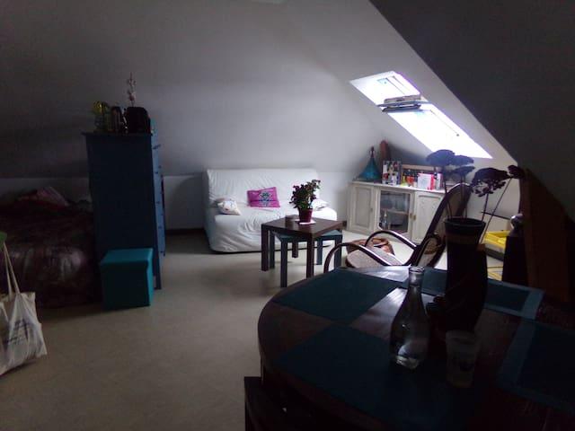 Studio Duplex 35 m2 à côté des Machines de l'ïle - Nantes - Departamento
