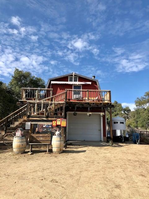 the Barn @ RedThorne Ranch, mini petting zoo
