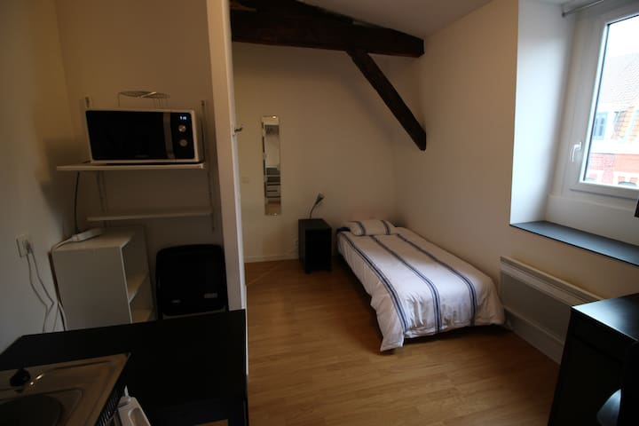 Fully furnished room in Roubaix - Roubaix - Casa