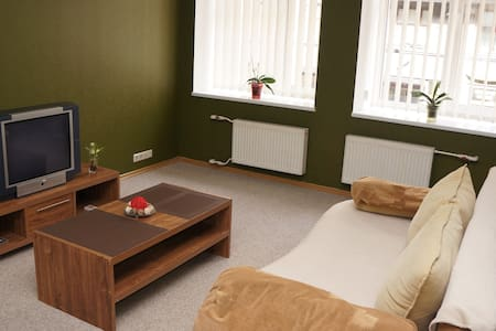 Riga Center,Clean,Spacious,Parking - Riga - Appartement