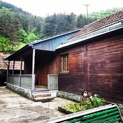 Cabin Dilijan