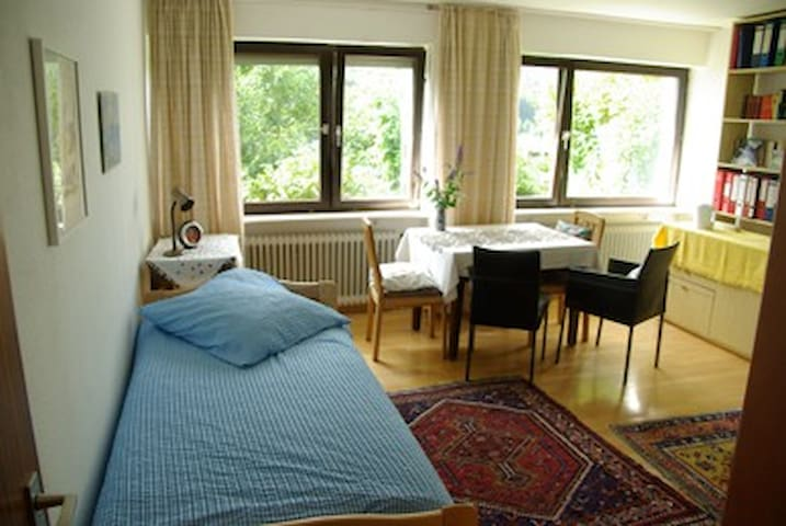 Bright spacious room, forest view
