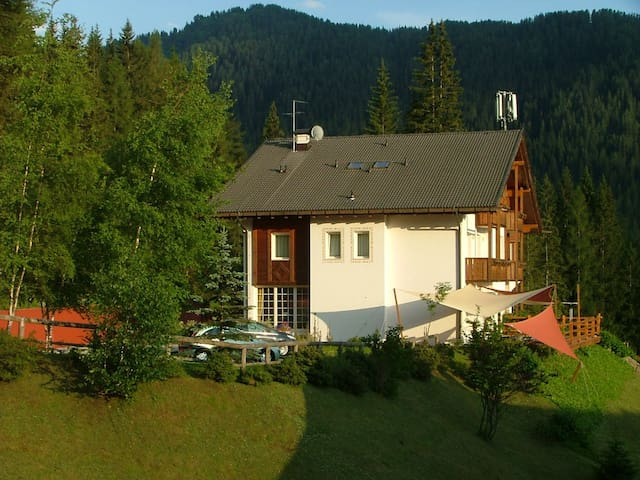 A small hotel in the Dolomites - Selva di Cadore